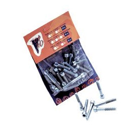 Pack tornillos Allen 8 mm. (25 uds)